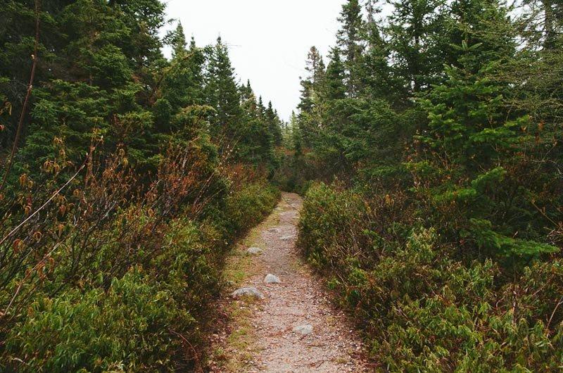 Jigging Cove Trail – Cape Breton Highlands National Park